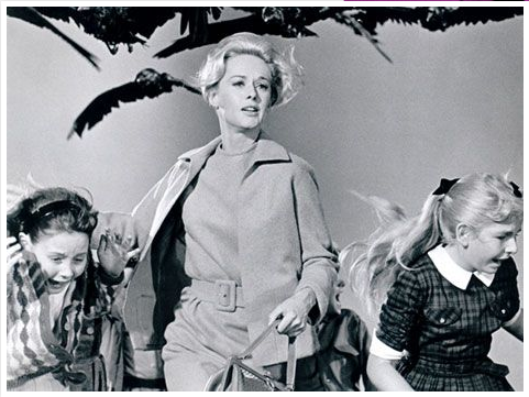 the birds tippi hedren