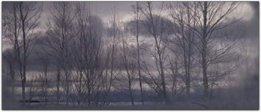 doctor zhivago winter trees